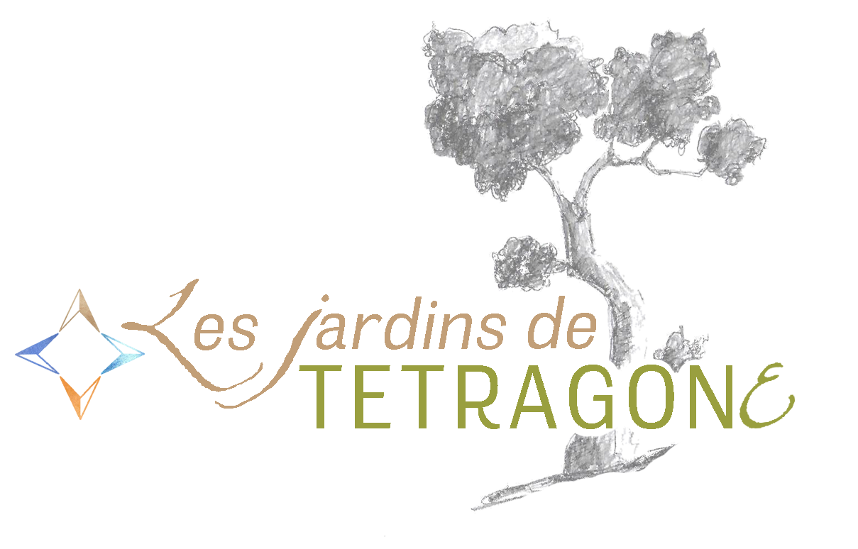 Les jardins de Tétragone