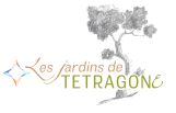 logo-2-web