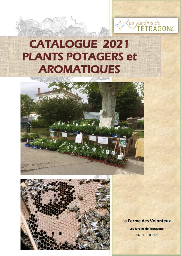 Catalogue 2021